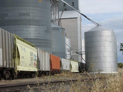 grain-train-3